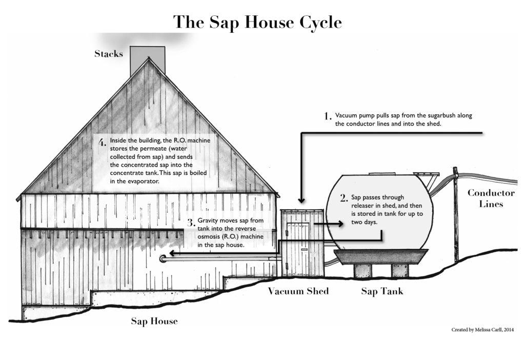 sugar, how it's made, sap house, process